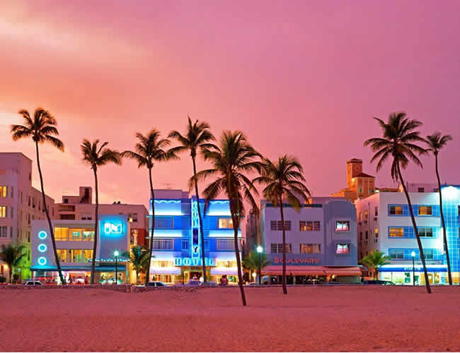 Miami pink skies at south beach and palm trees